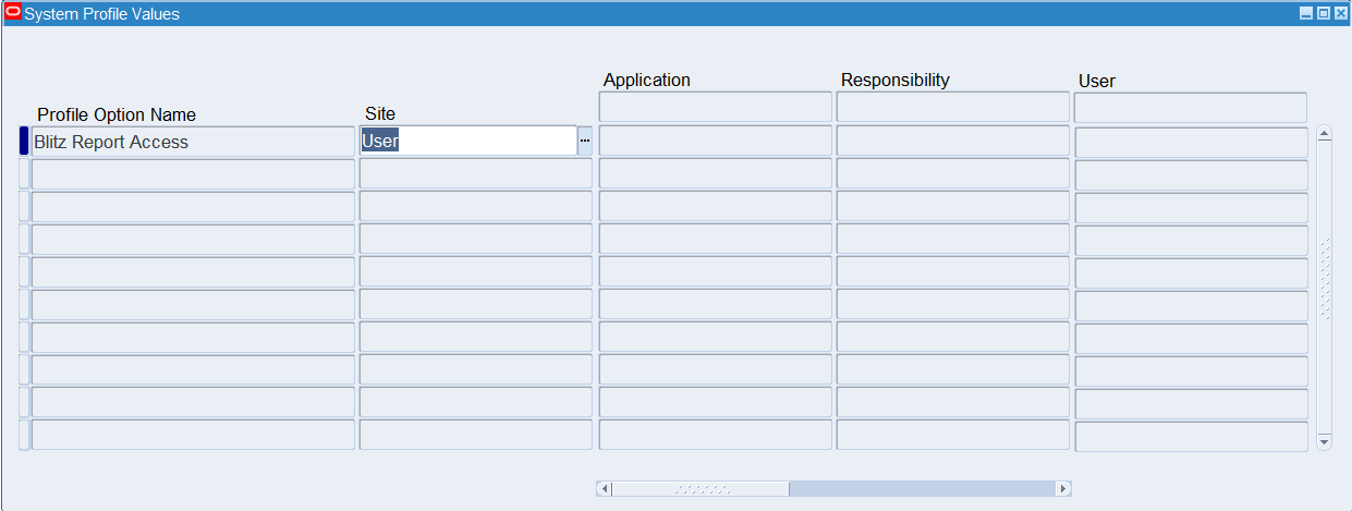 Setting Blitz Report Access level